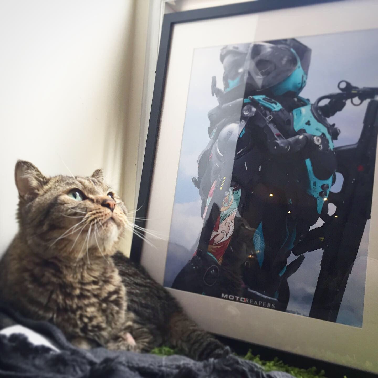 Print available on Artstation's Print Store! Cat approved.