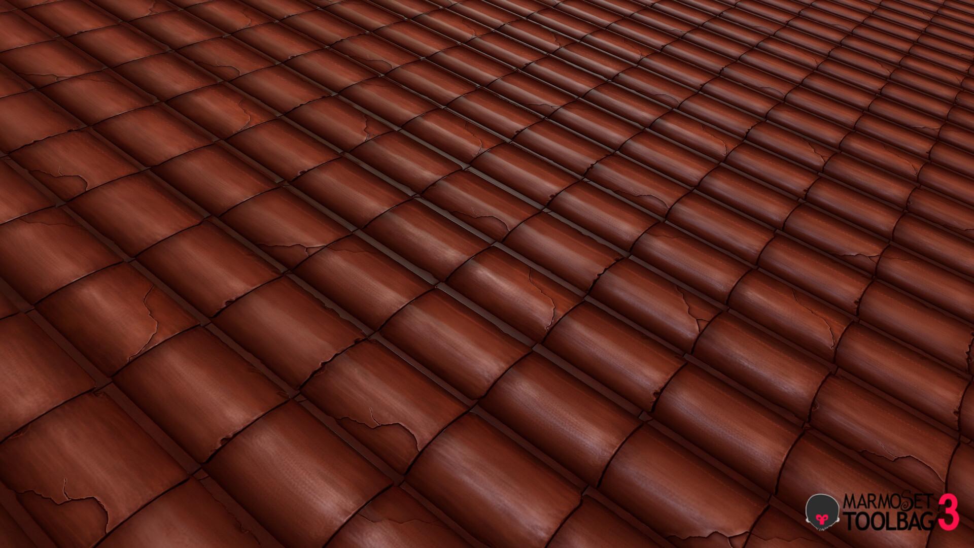 David alarcon roof