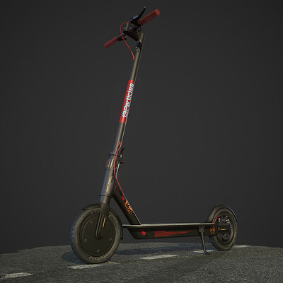 Tasleem gazi 13 particles electric scooter 1