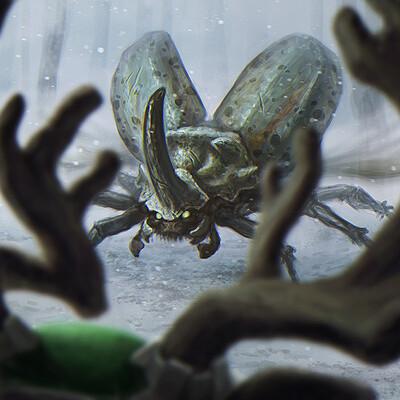 Xabi gaztelua beetle vs snowmane low