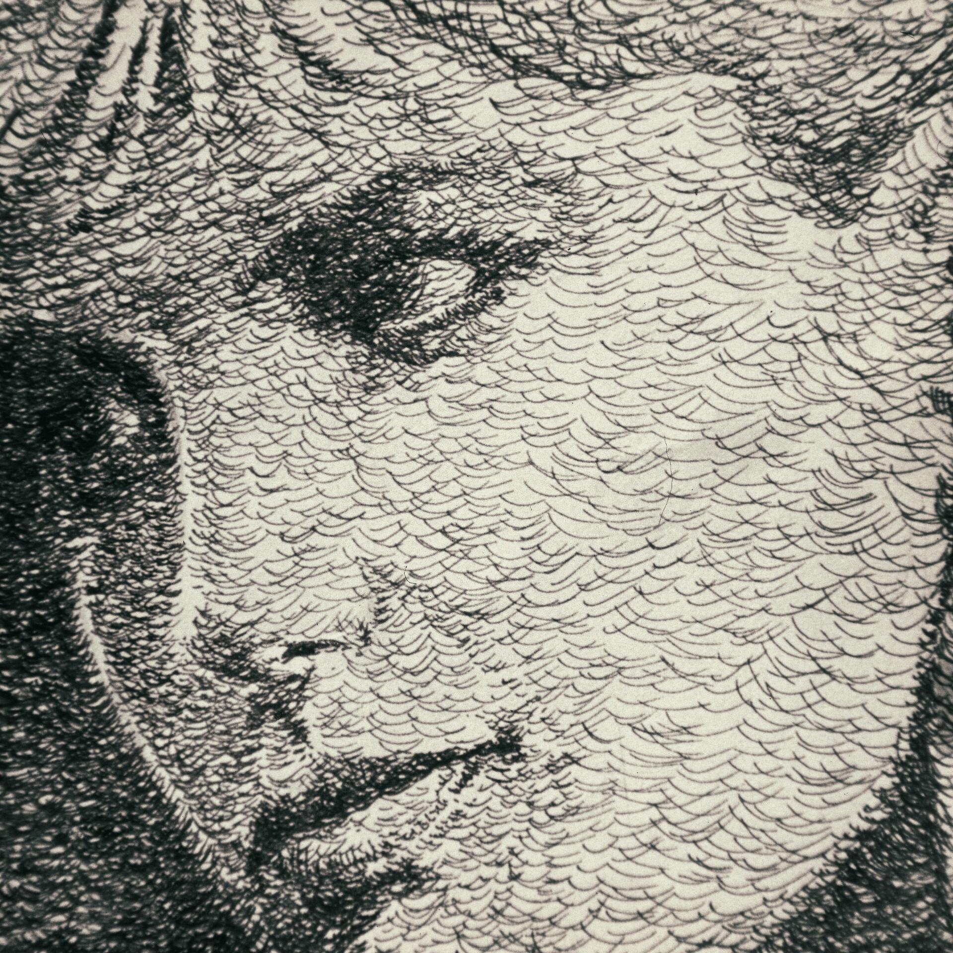 Michael wu img0034