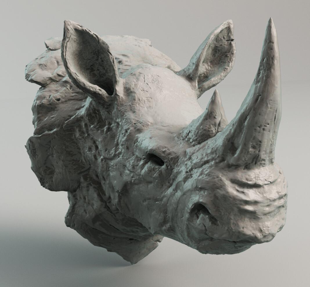 Suzy bouche rhino solo