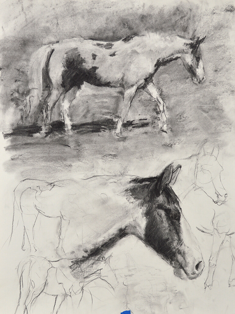 Jonathan hardesty horsesketches medium