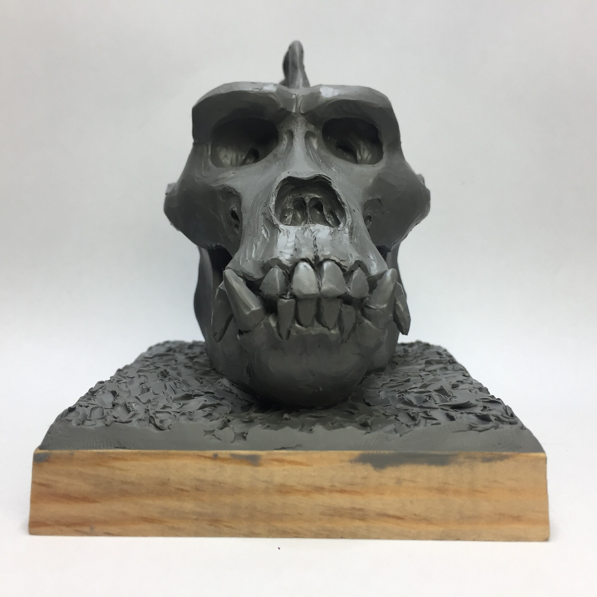 Just for fun and practicing knowledge about the gorilla skull. Would you like to have such a small part of the reference on your shelf?