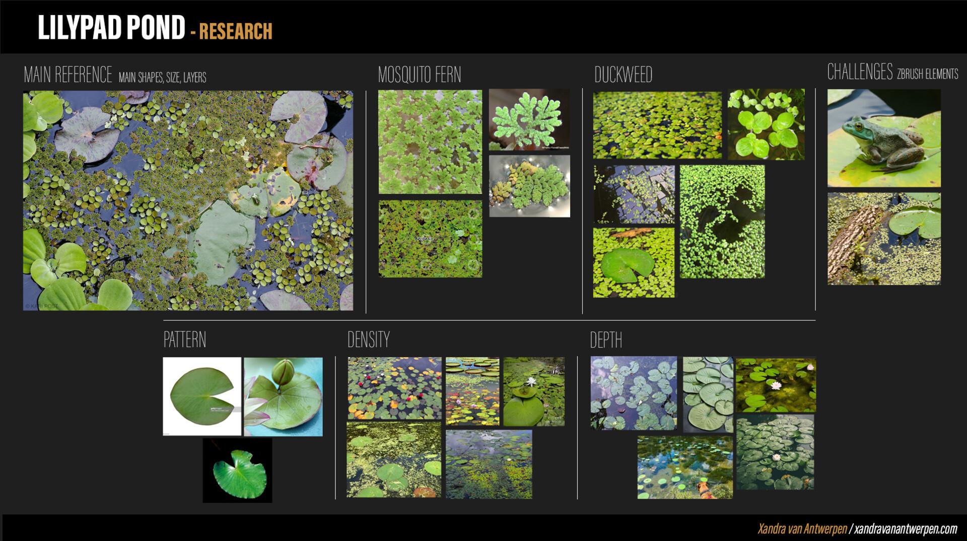 Xandra van antwerpen lilypx pond research