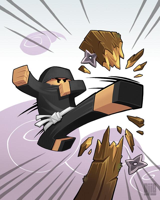 Jean baptiste djib reynaud ninja academy epreuves casse