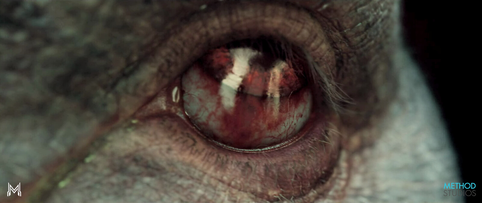 Modified existing textures by adding  burst veins and blood in Okja's eyes. Also some color retouch around the eyes for extra redness.