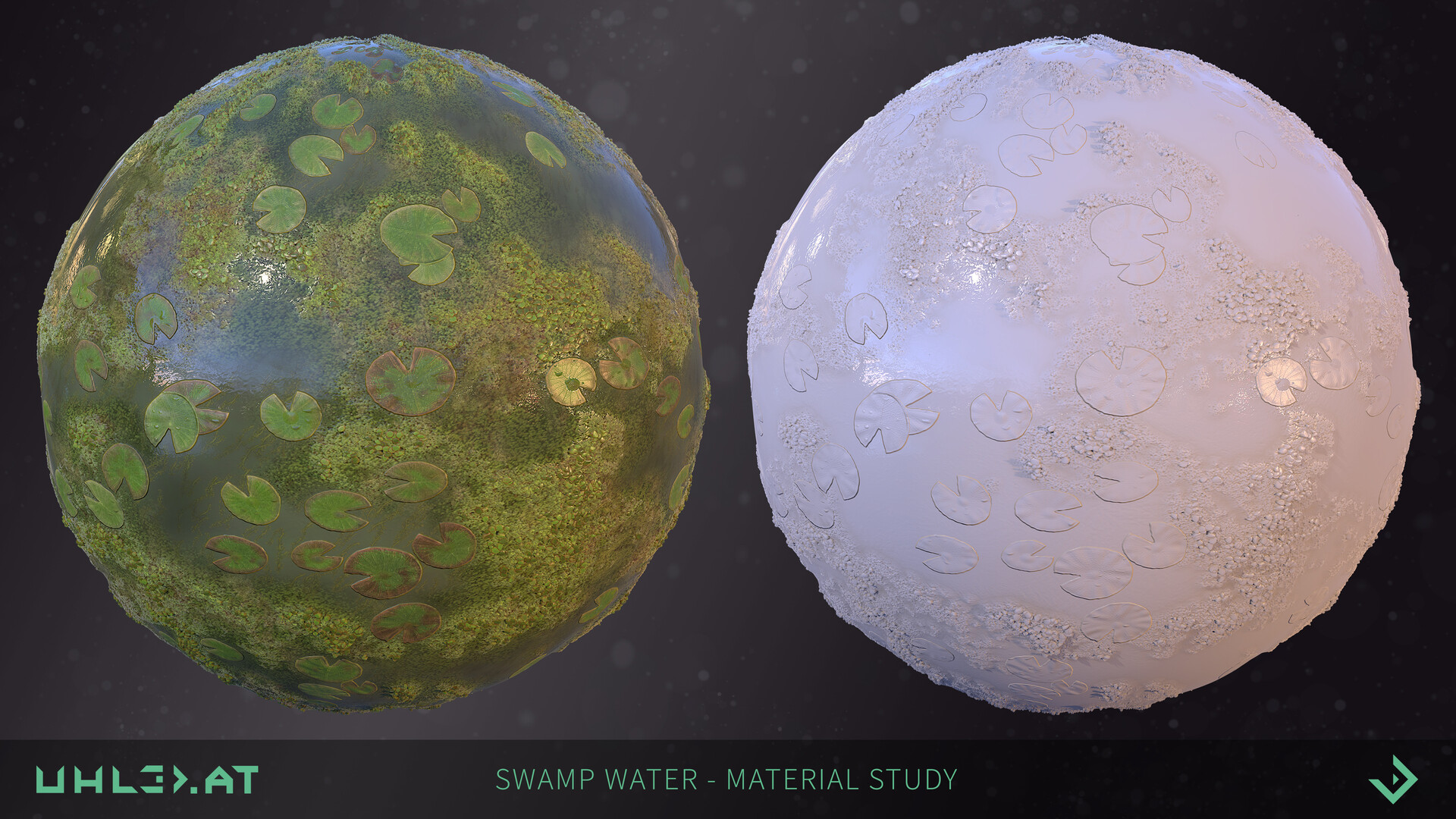 Dominik uhl swamp water 01