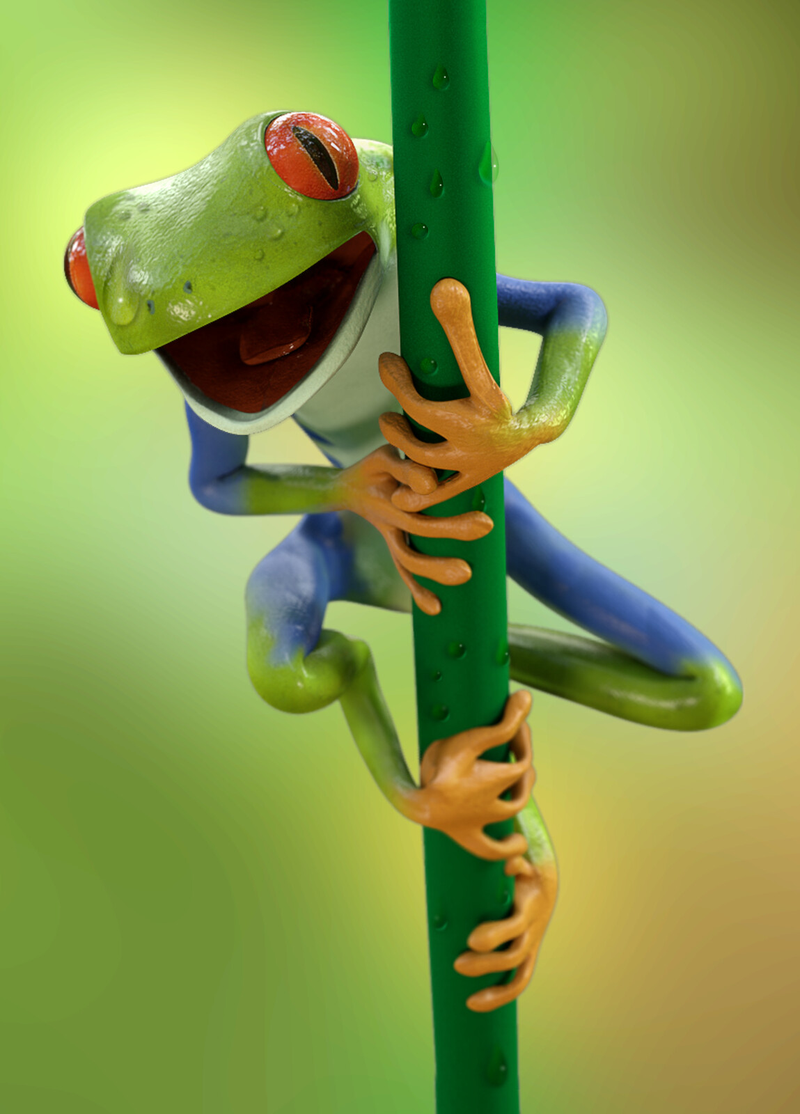 Red eyed tree Froggo