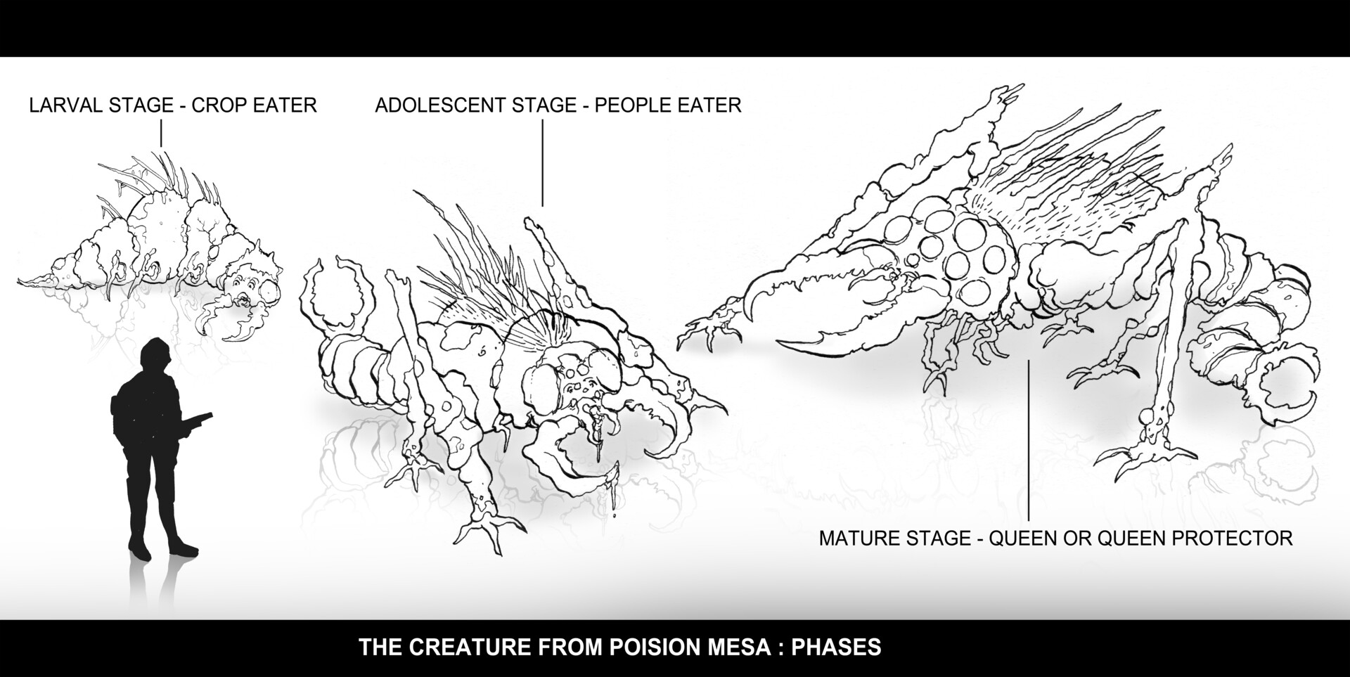 Christian herman pm creature phases sketches compiled