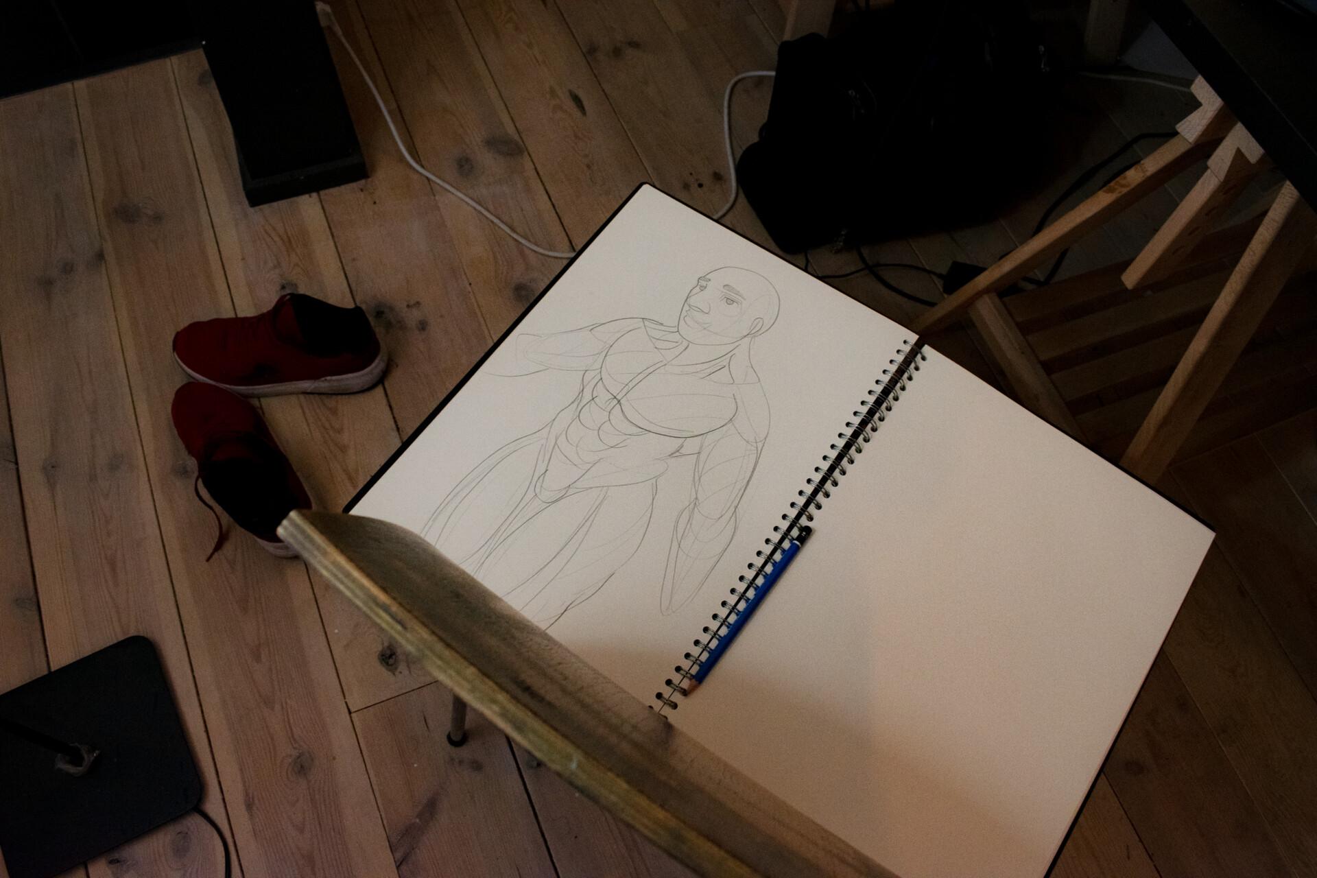 male anatomy drawing