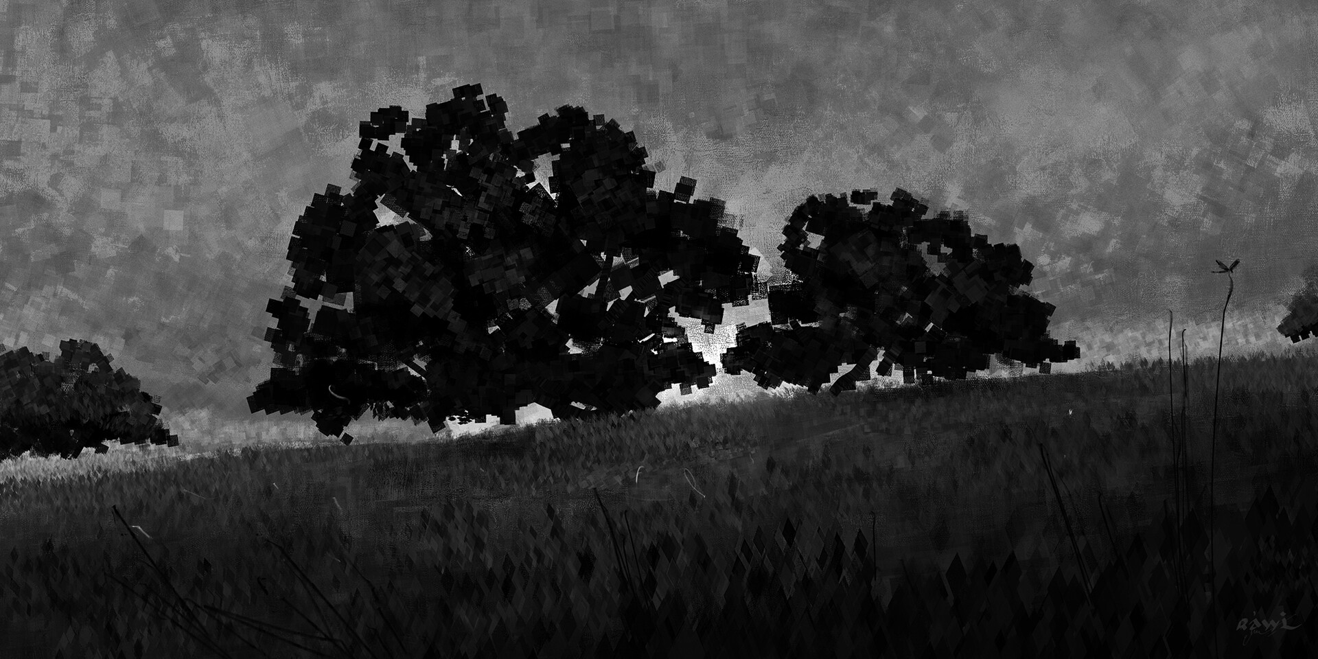 Ahmed rawi two trees sunnset low bw
