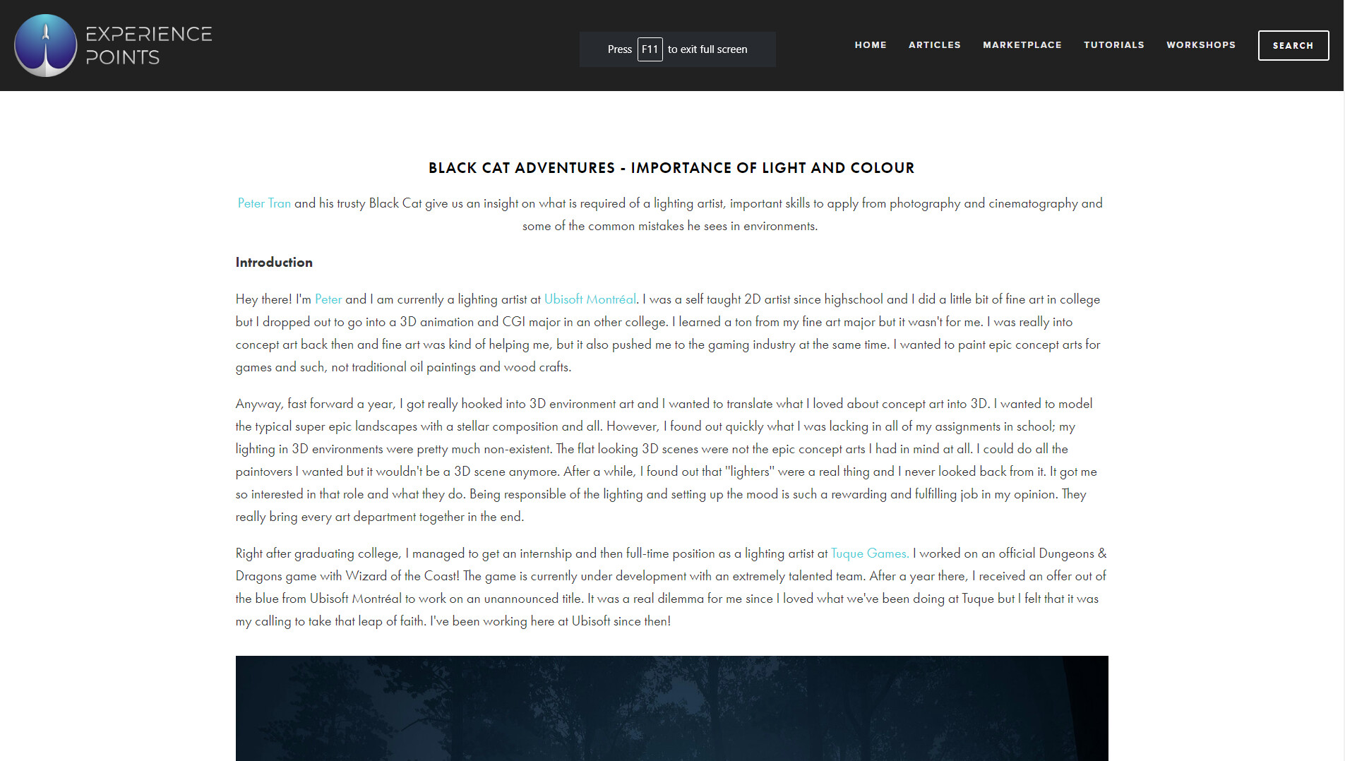 https://www.exp-points.com/black-cat-adventures-importance-of-light-and-colour