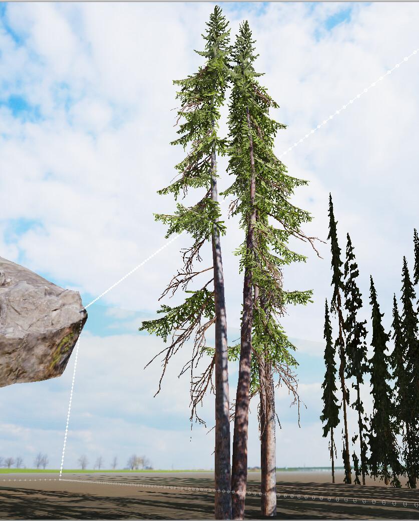 speedtree pines