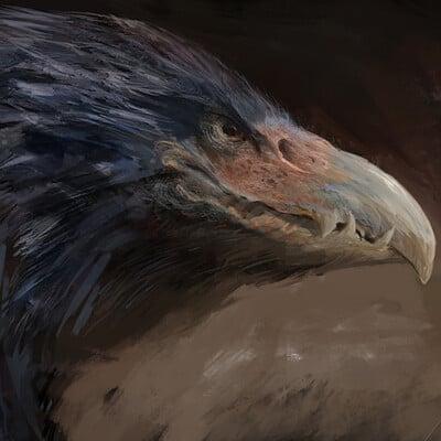 Antonio j manzanedo dragon bird manzanedo