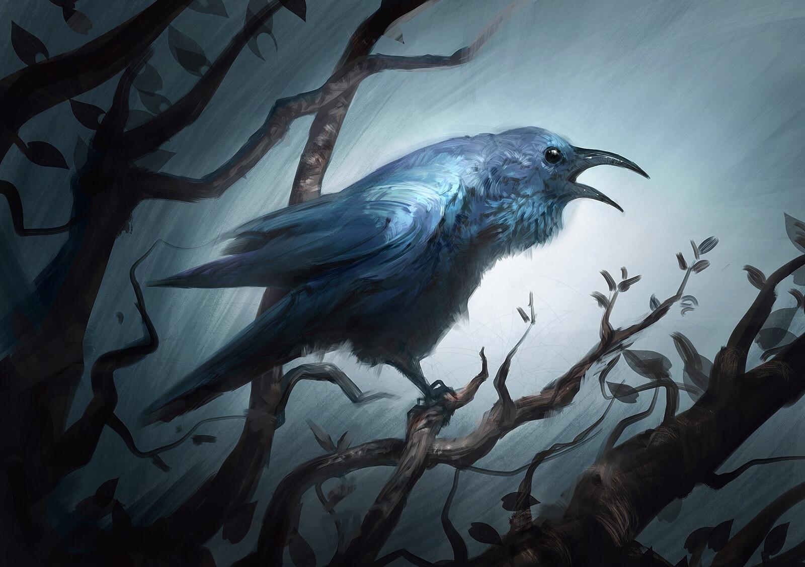 Jorge jacinto bird3
