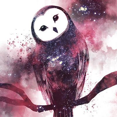 Dian huynh x 03 owl
