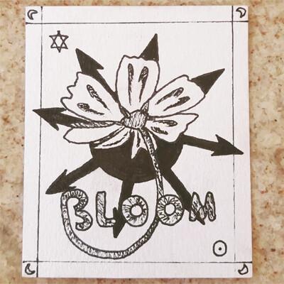 Vitoria xavier bloom