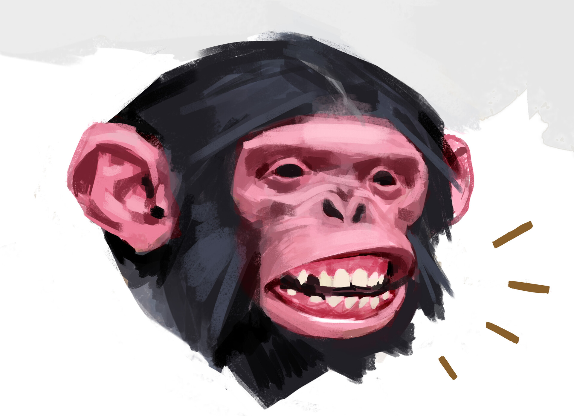 Jens claessens monkey