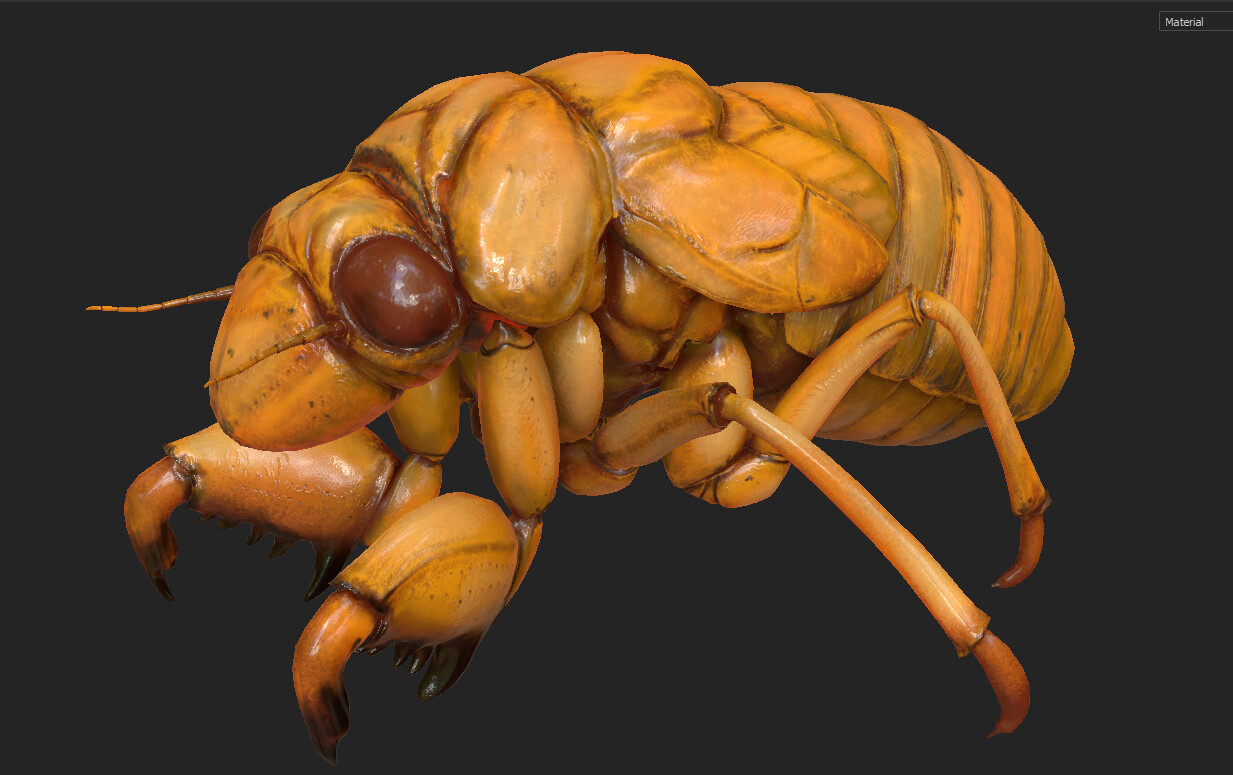 Eric keller cicada nymph textured 04