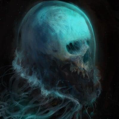 Antonio j manzanedo skull jellyfish manzanedo