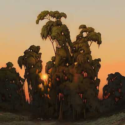 Giorgos tsolis trees in sunset small