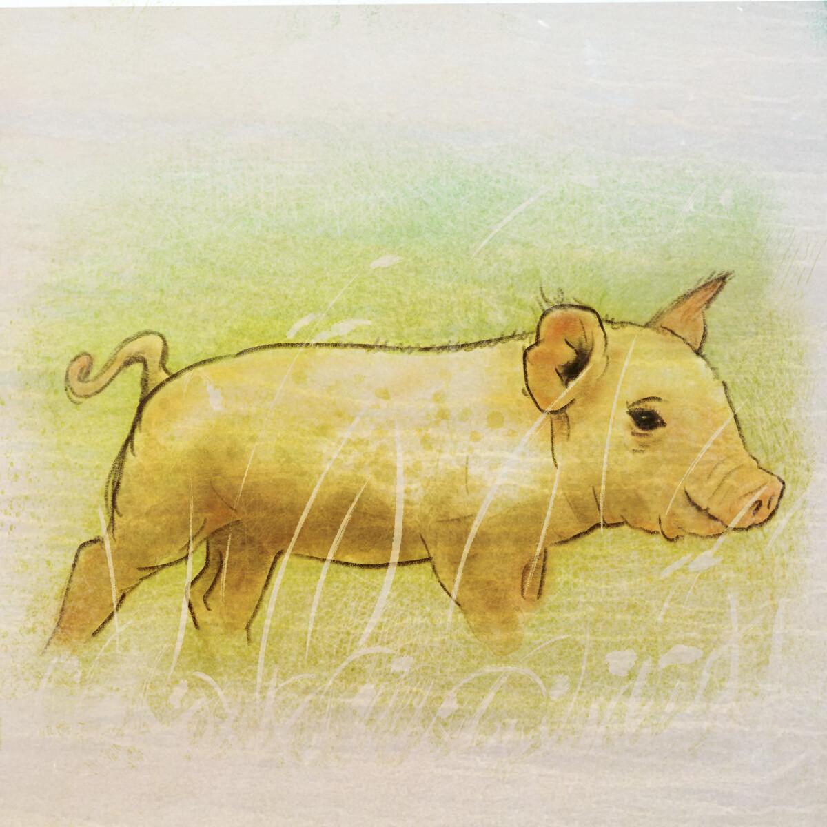 Piglet in Procreate