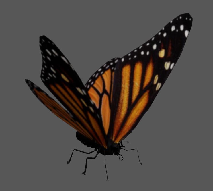 Suzy bouche papillon color