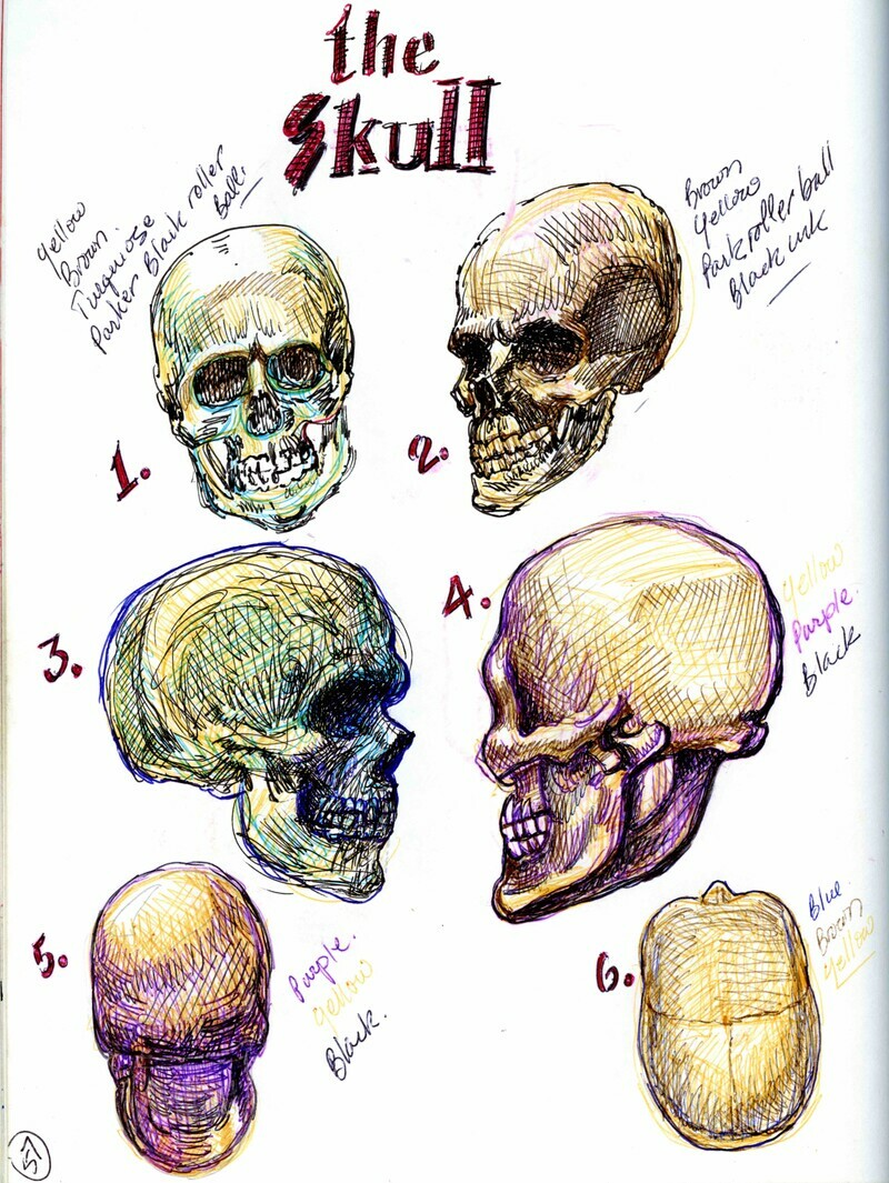 Choosing the sphere as the base form for the human head, is based on it's precise relationship to the actual skull.