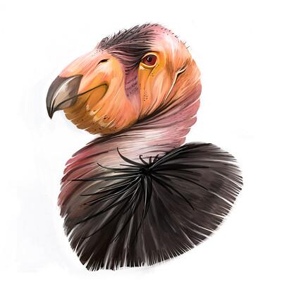 Cristina zoica dumitru condor