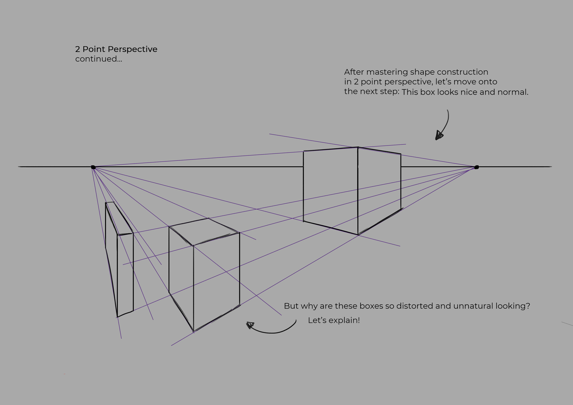 Shellz art perspective 6