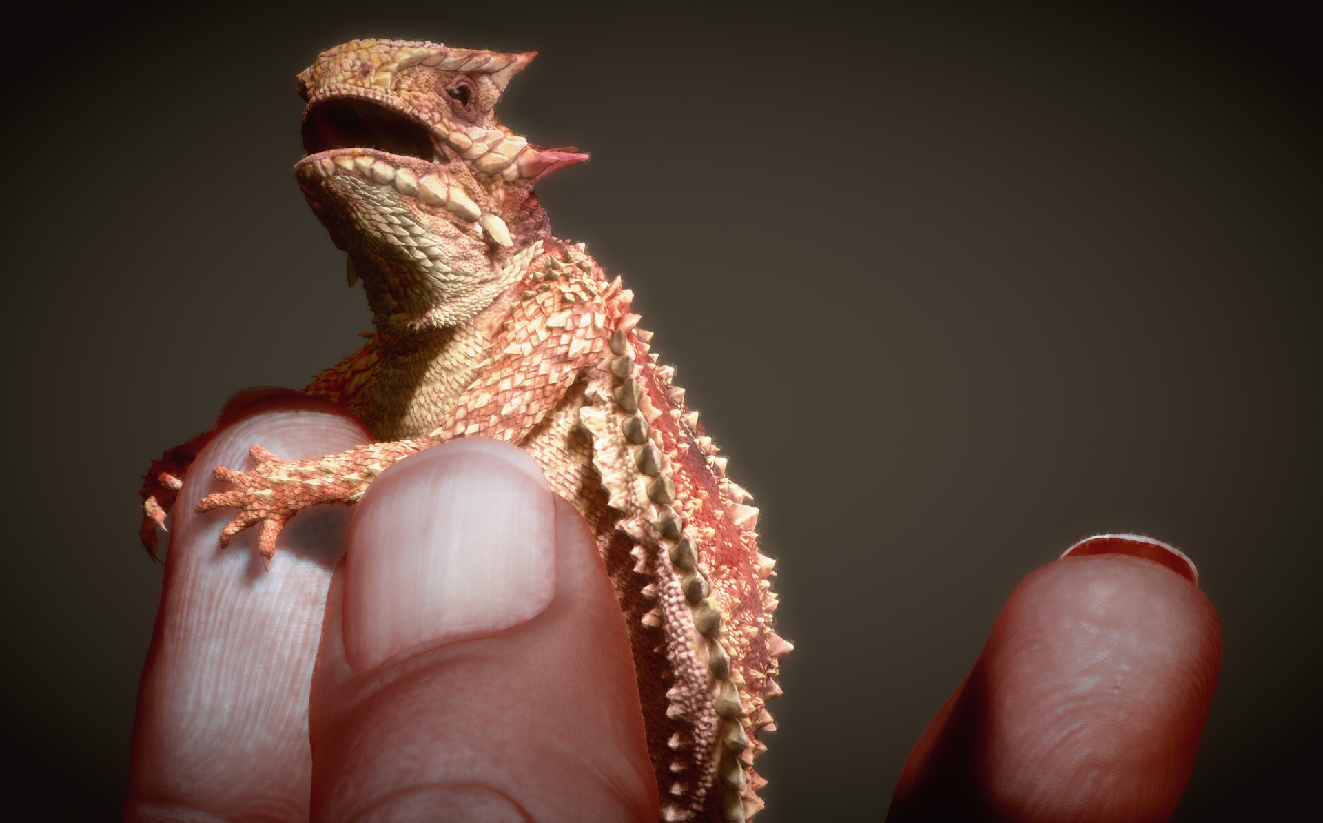 Eric keller keller lizard 001