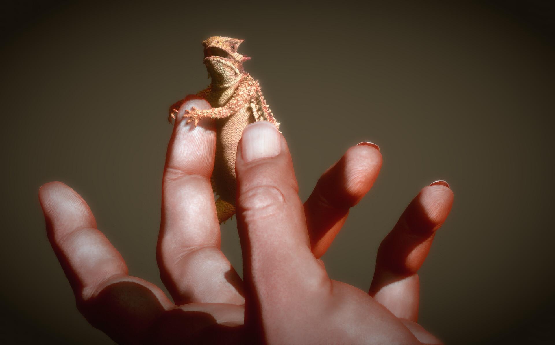 Eric keller keller lizard 003