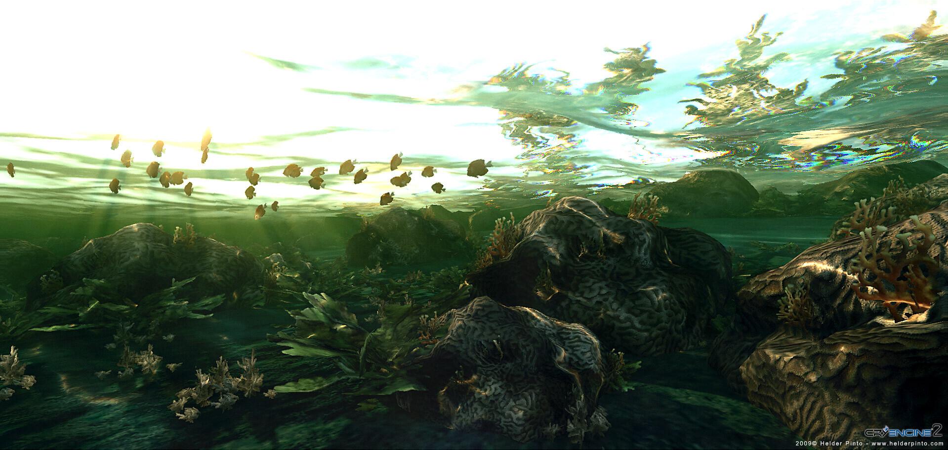 Helder pinto underwater 1