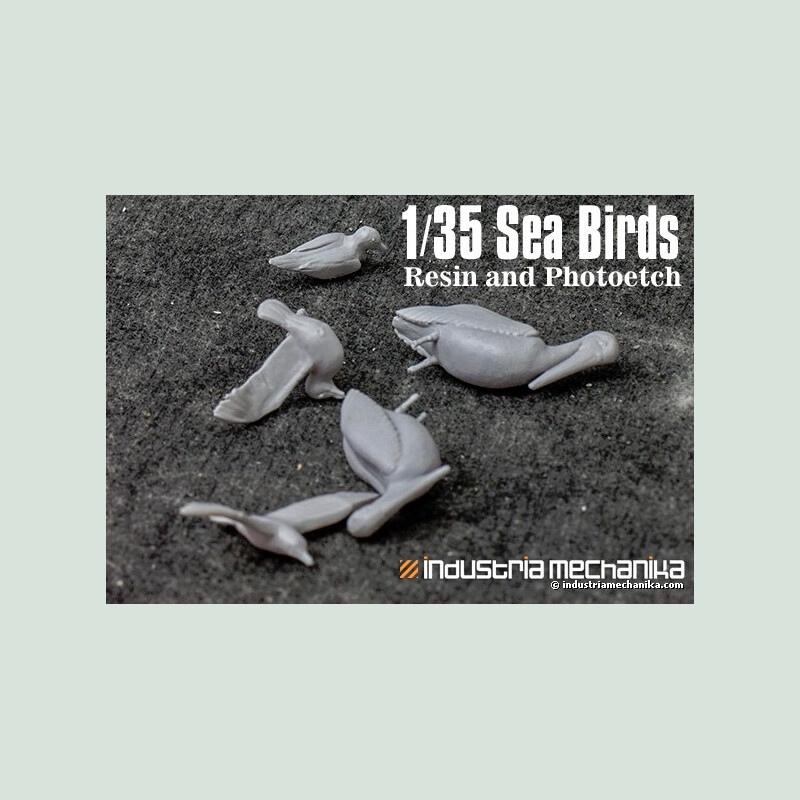 Lee williamson 135 sea birds