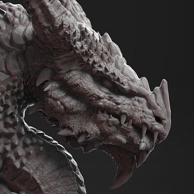 Nicolas swijngedau dragonfinalpsd