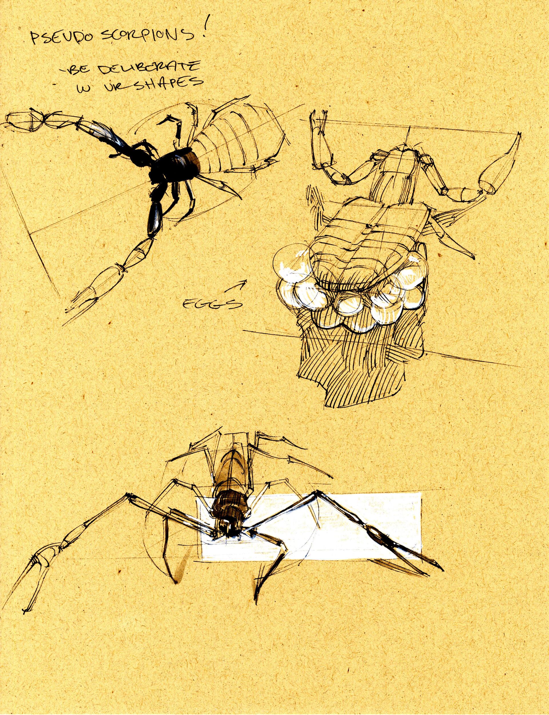 Drake truber arachnid2