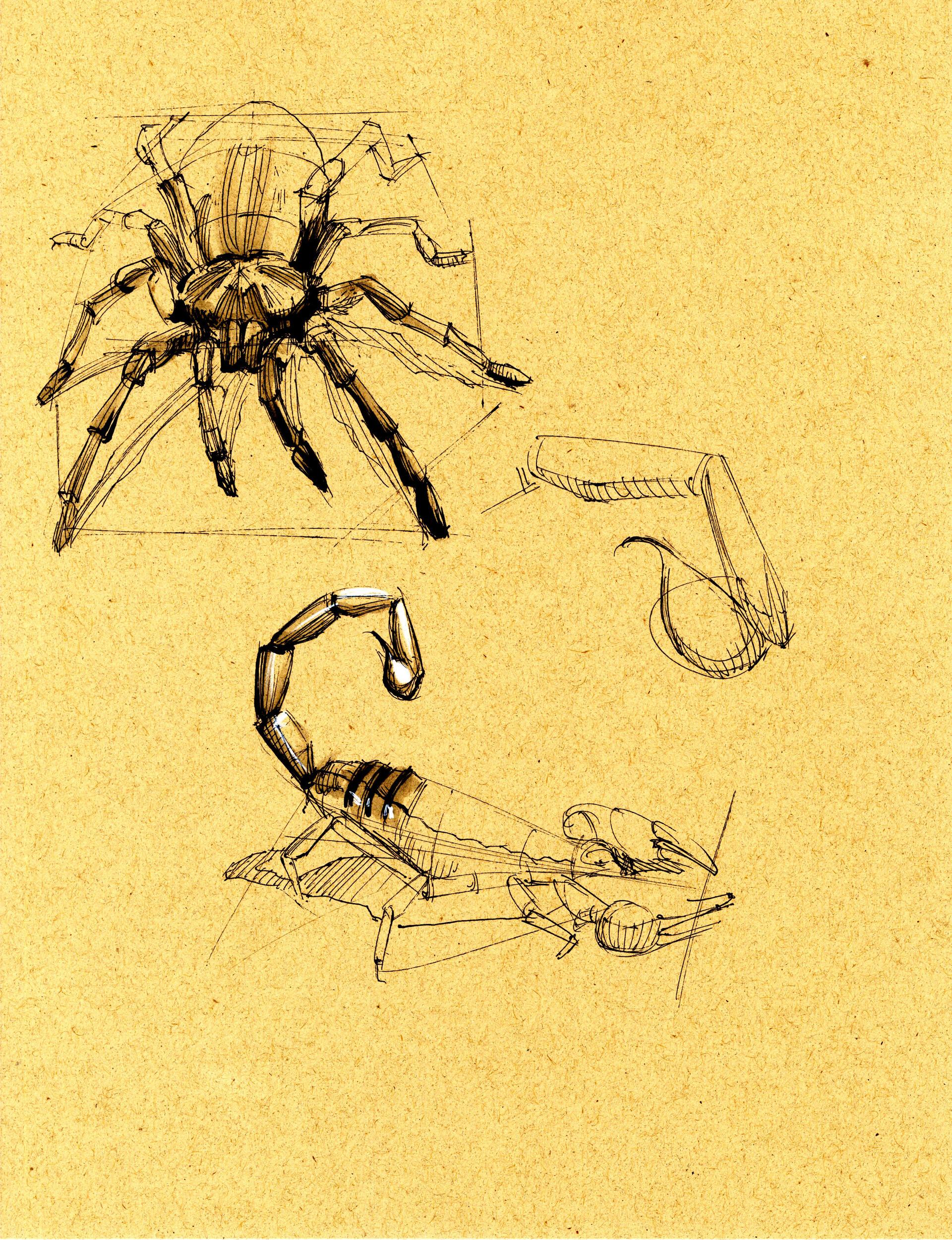 Drake truber arachnid5