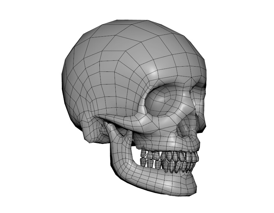 Skull Sculpt re-topped with Maya low poly