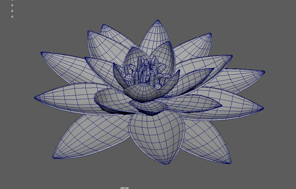 Lily model topology.