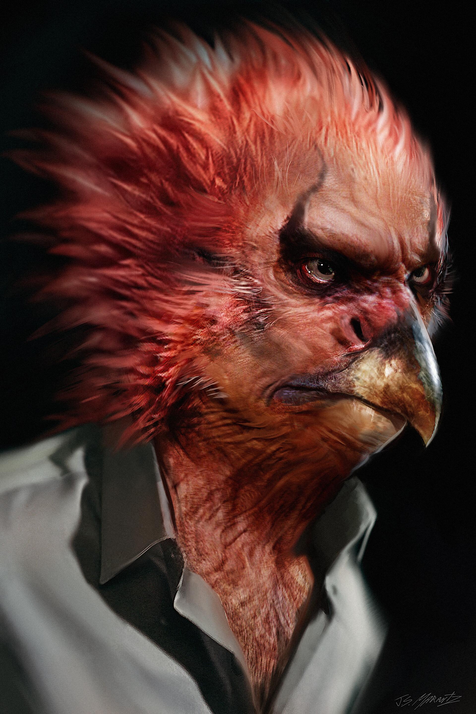 Jerx marantz vulture 11