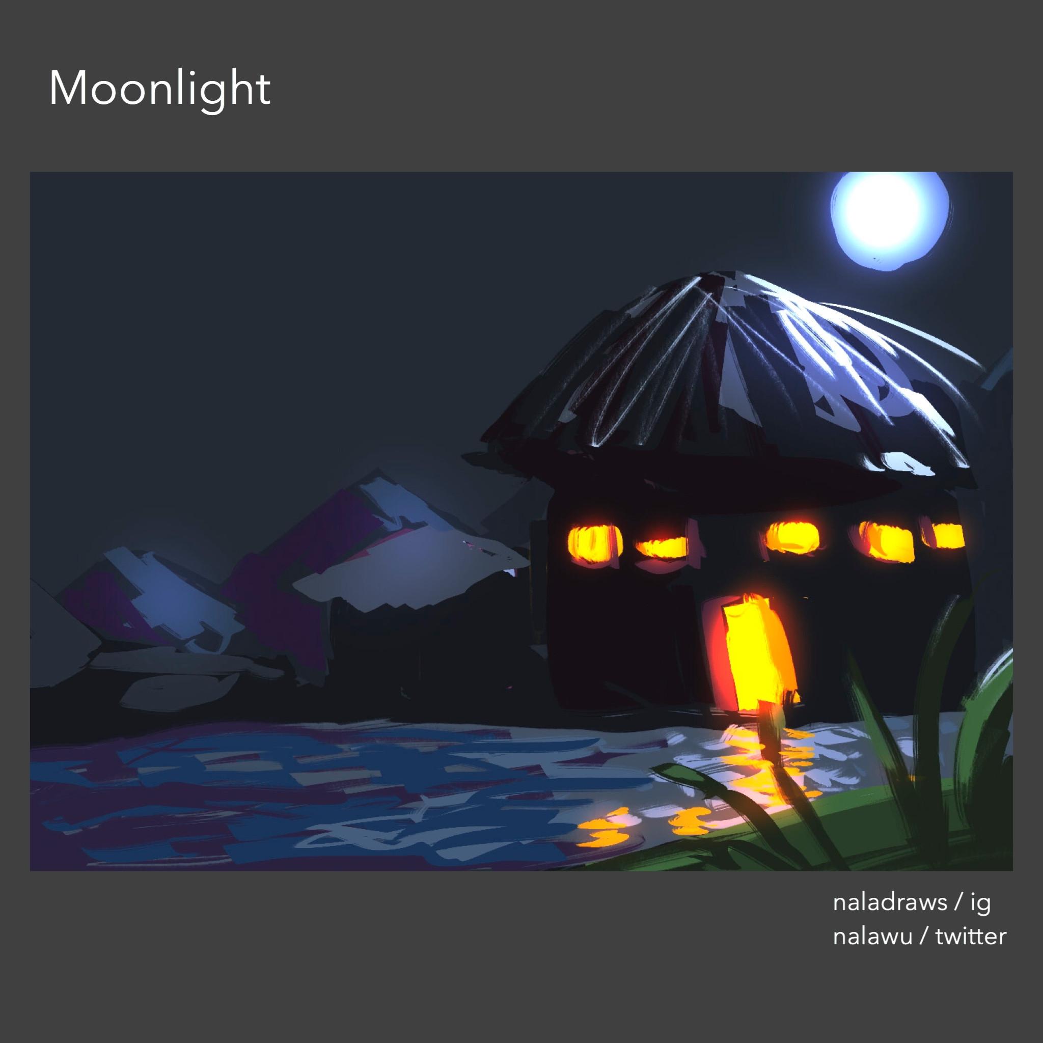 Exterior - Moonlight