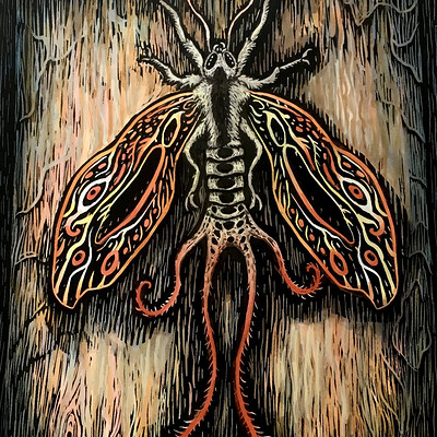 Patrick weck gangis moth web