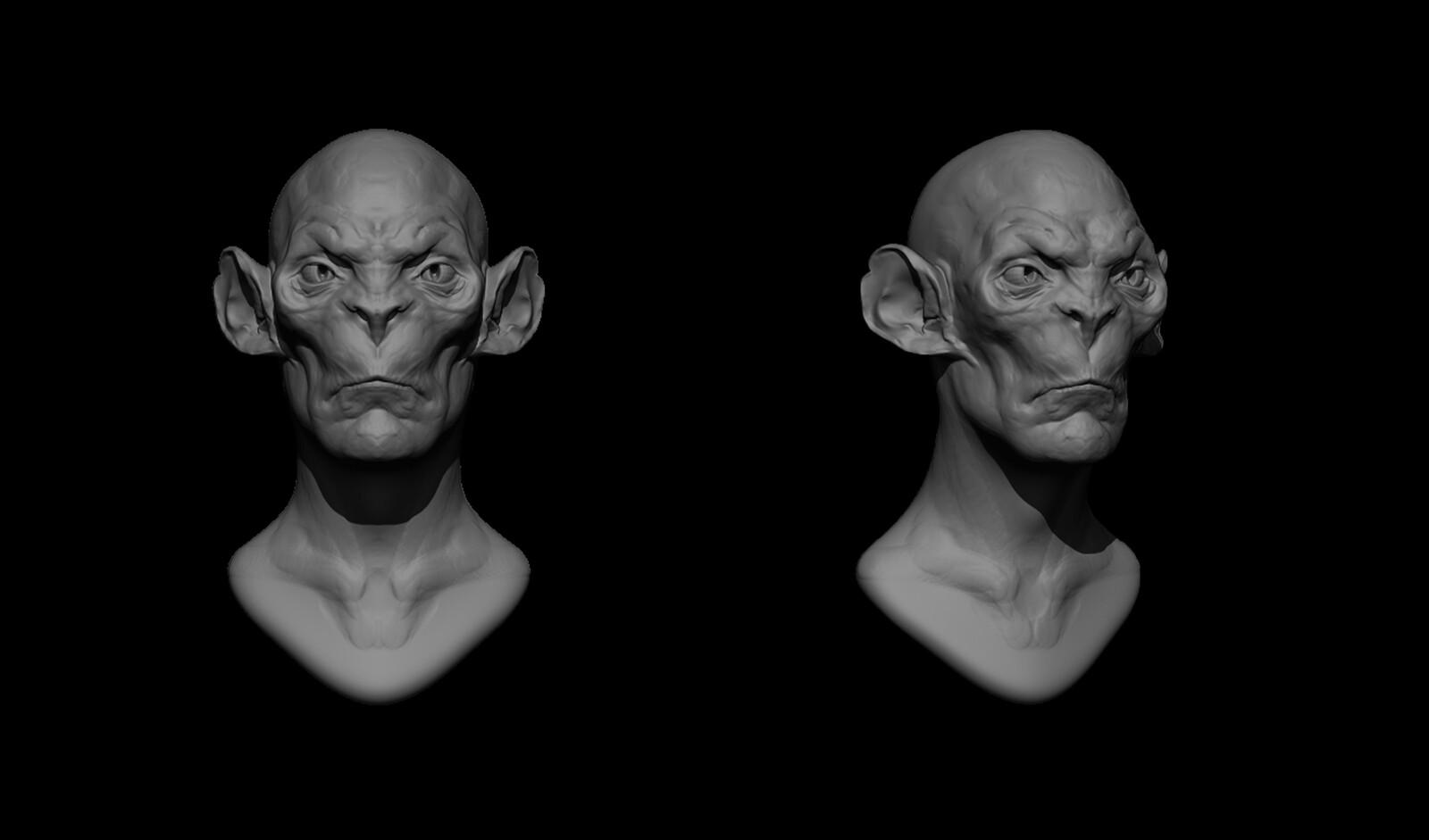 Concept: Head