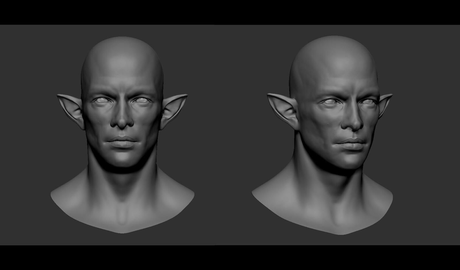 Concept: Elf Head