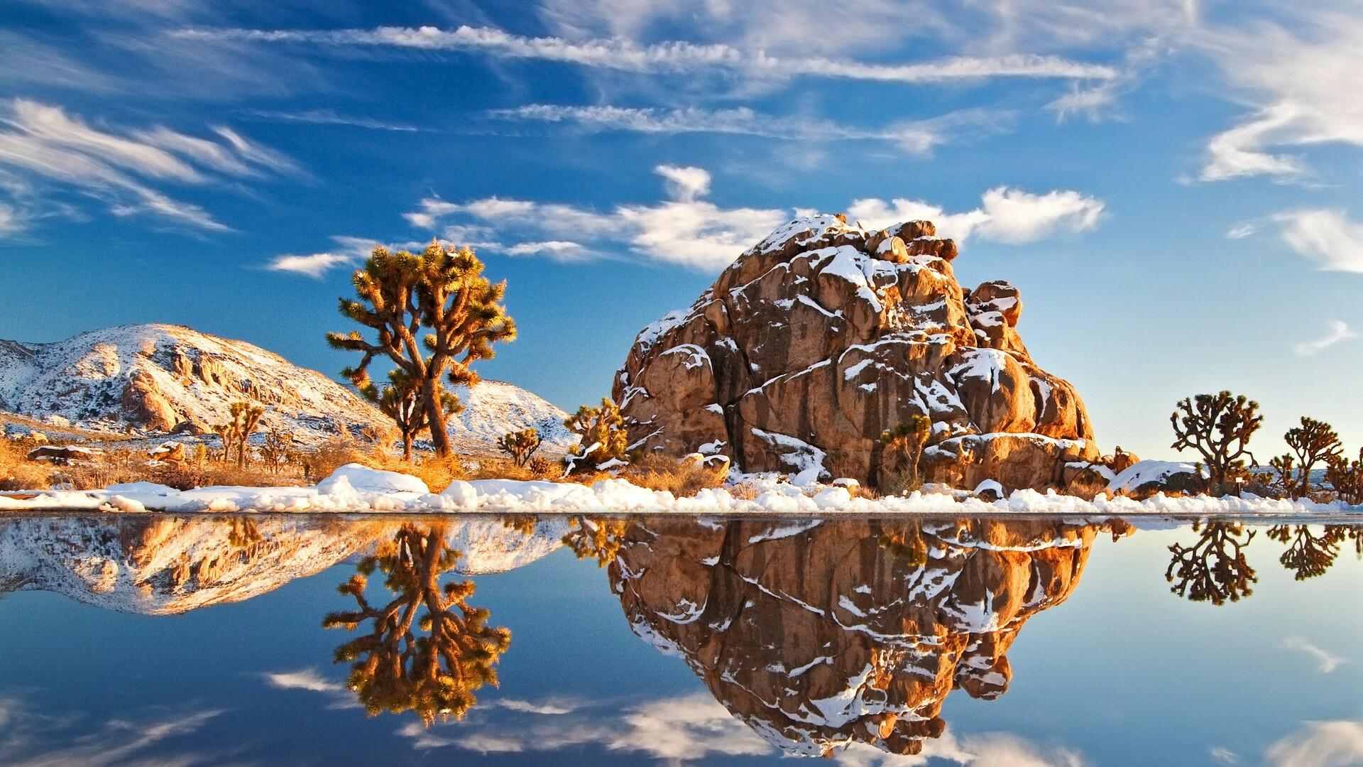 The original photograph of the landscape
