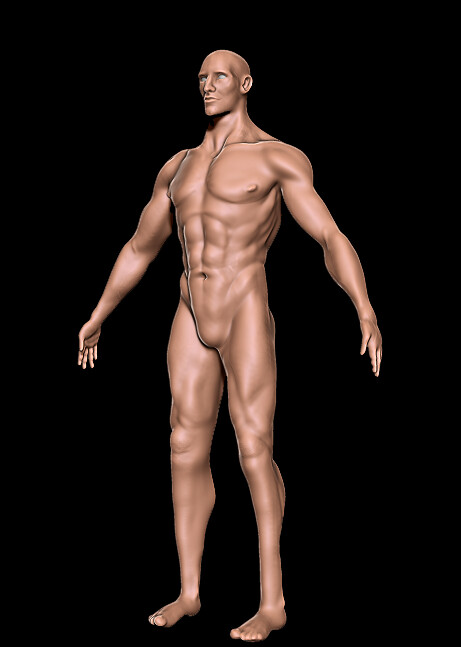 Kat townsend anatomyquarter
