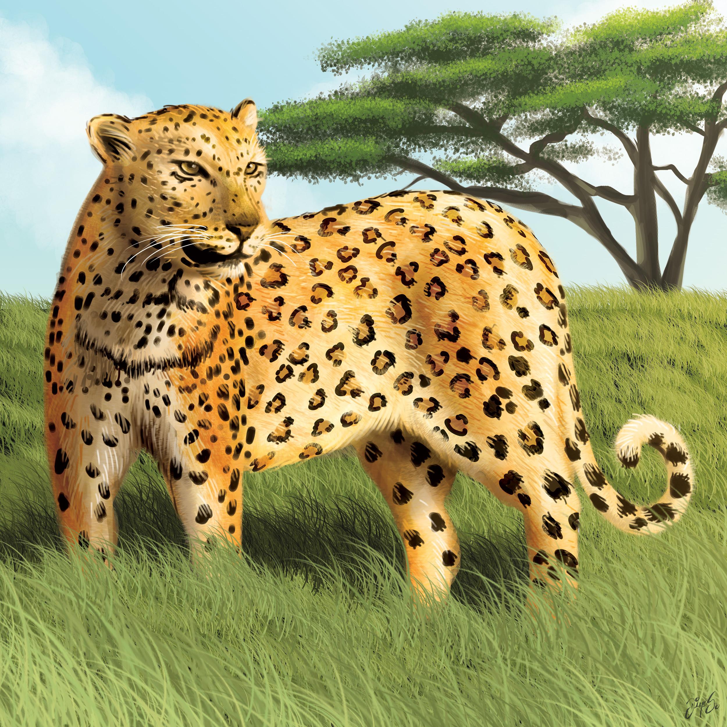 Tile illustration - Leopard