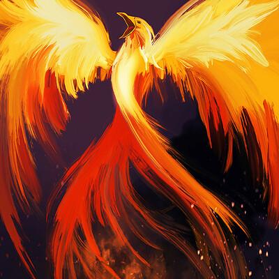 Jenny hefczyc phoenix klein