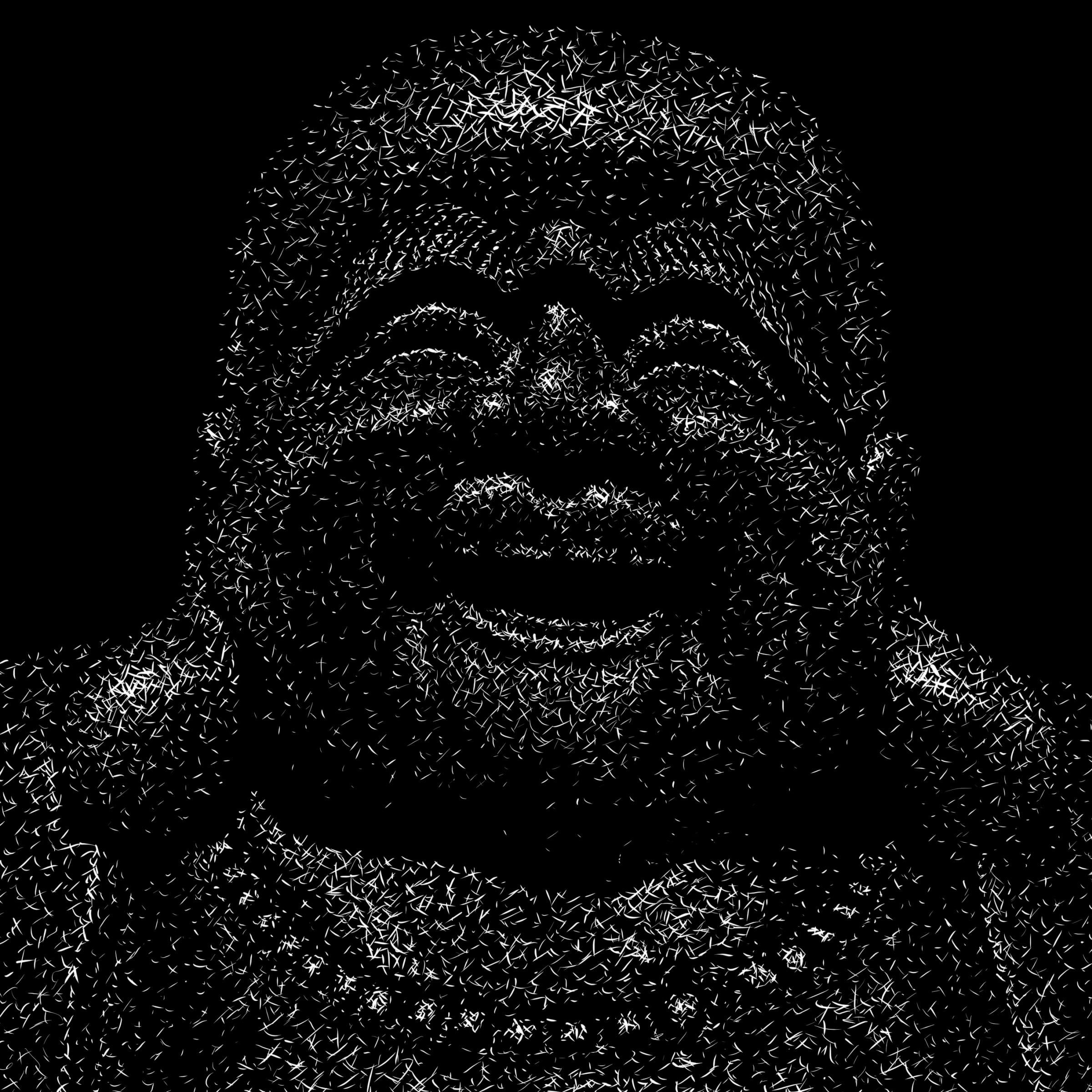 Budai, detail Digital scratchboard, january 2020